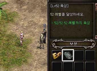 ss2923_12b.jpg